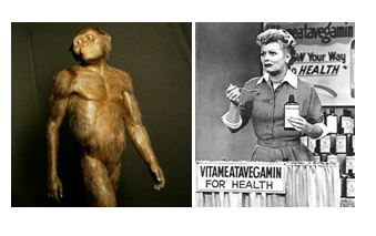 Should we blame all our problems on Lucy?